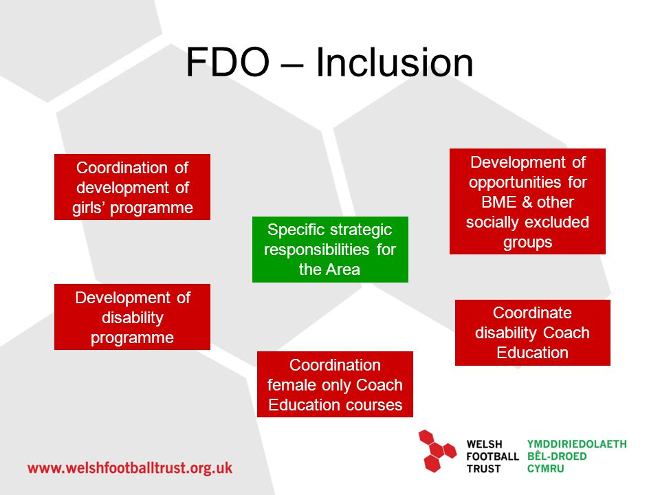 FDO – Inclusion Specific strategic responsibilities for the Area Coordination of development of girls programme Development of disability programme De