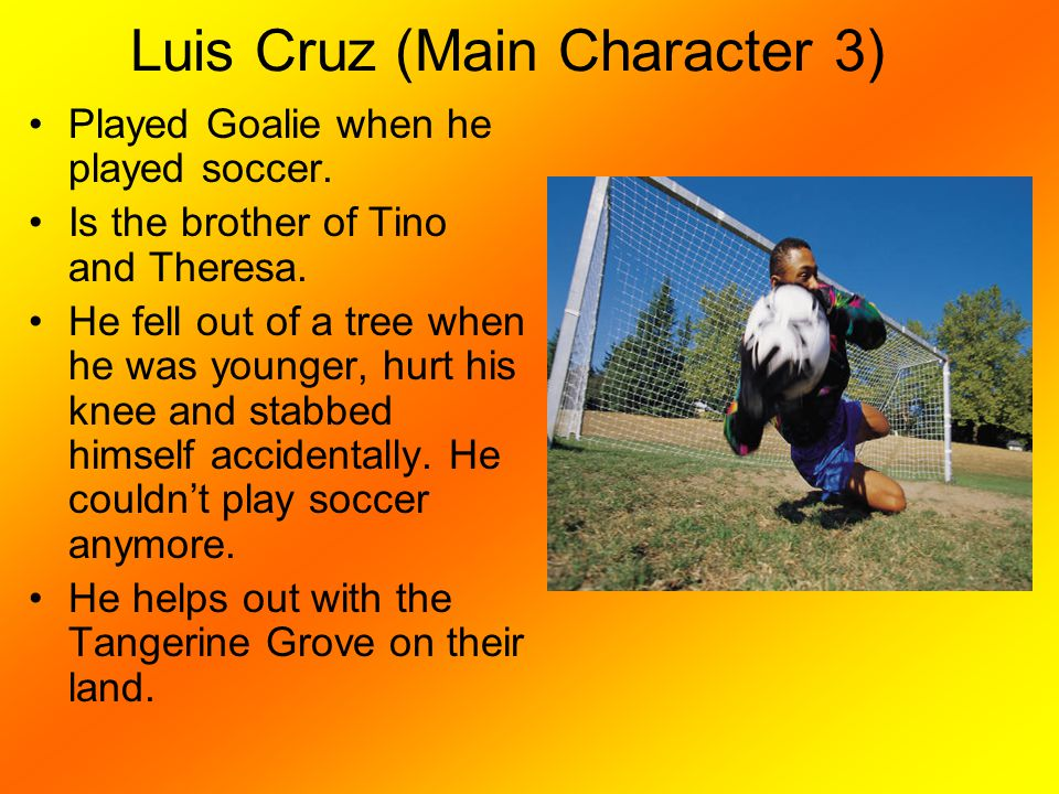Luis Cruz (Main Character 3) Played Goalie when he played soccer. Is the brother of Tino and Theresa. He fell out of a tree when he was younger, hurt