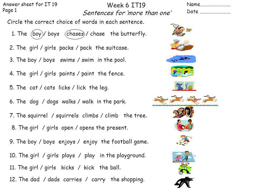 1. The boy / boys chases / chase the butterfly.