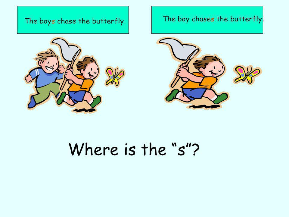 The boys chase the butterfly. The boy chases the butterfly. Where is the s