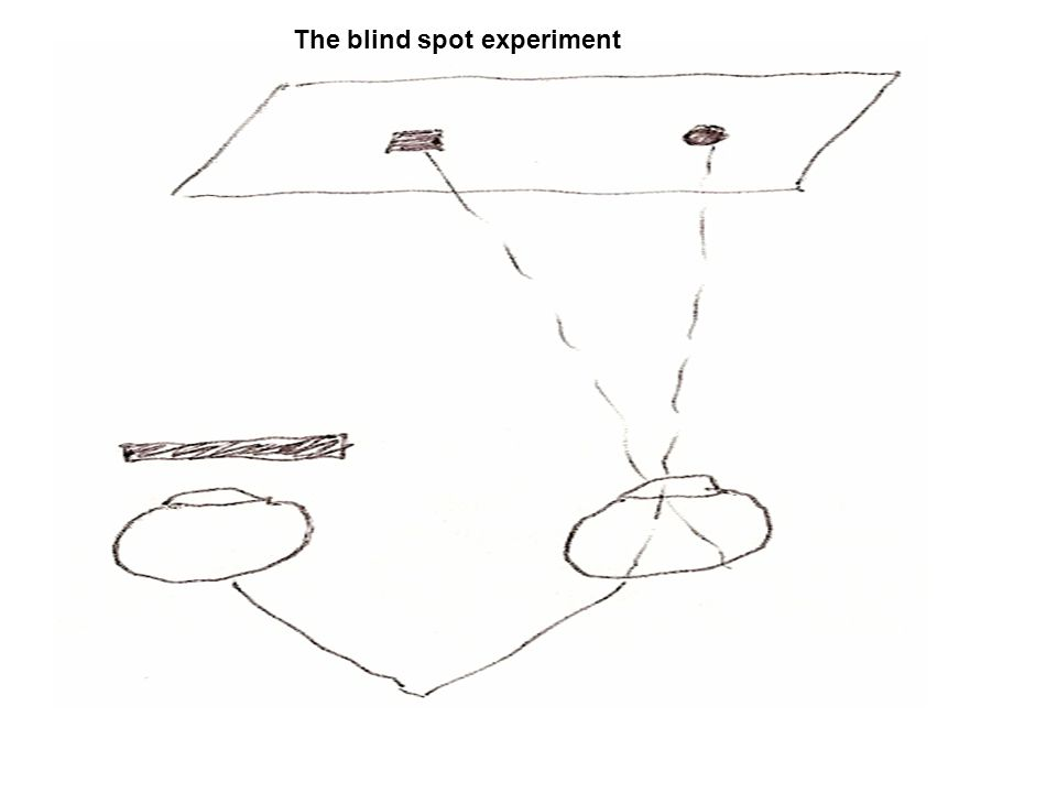The blind spot experiment