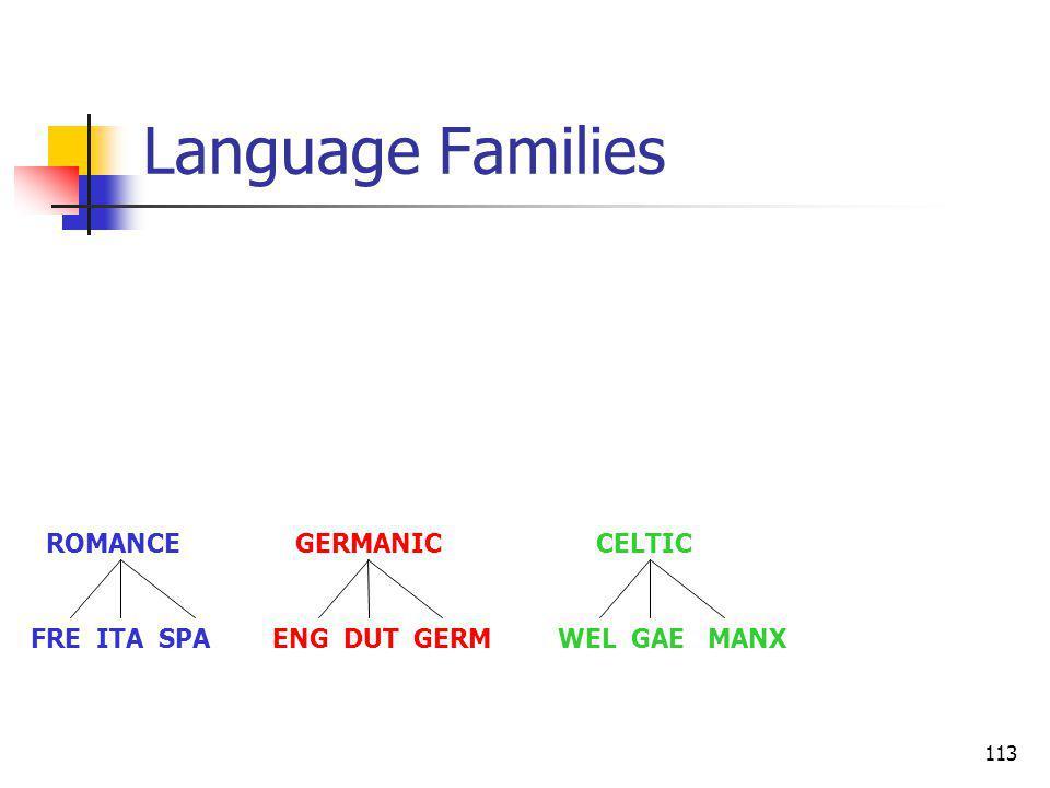 113 Language Families ROMANCE GERMANIC CELTIC FRE ITA SPA ENG DUT GERM WEL GAE MANX