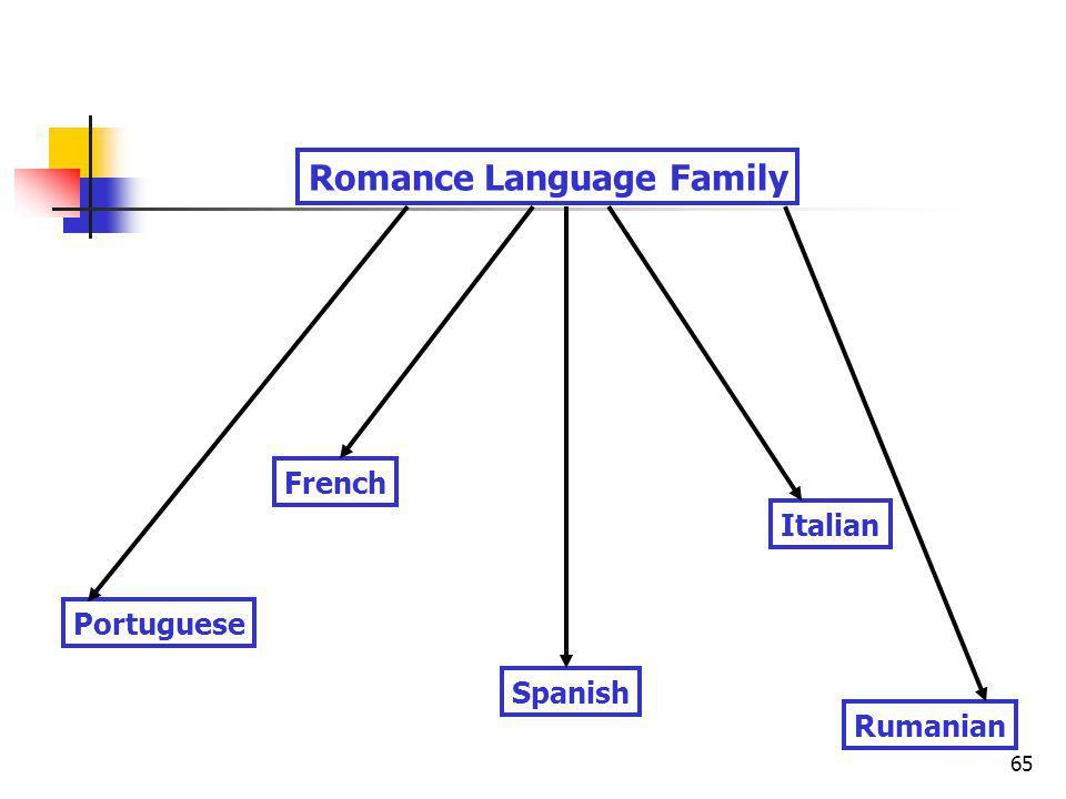 65 Portuguese Spanish Italian French Rumanian Romance Language Family