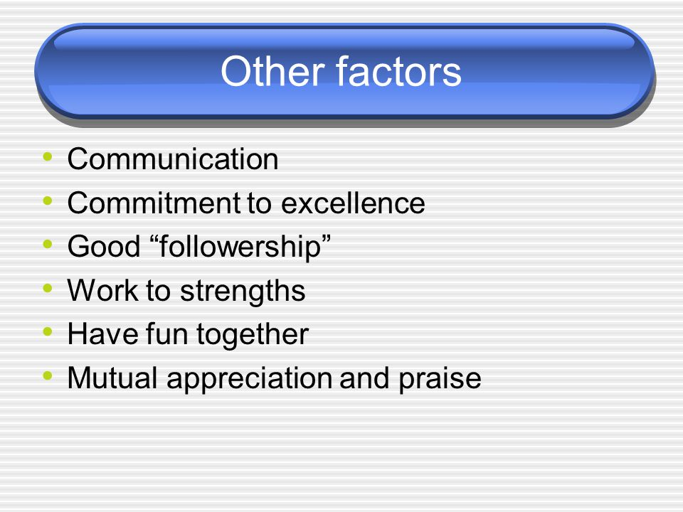 Other factors Communication Commitment to excellence Good followership Work to strengths Have fun together Mutual appreciation and praise