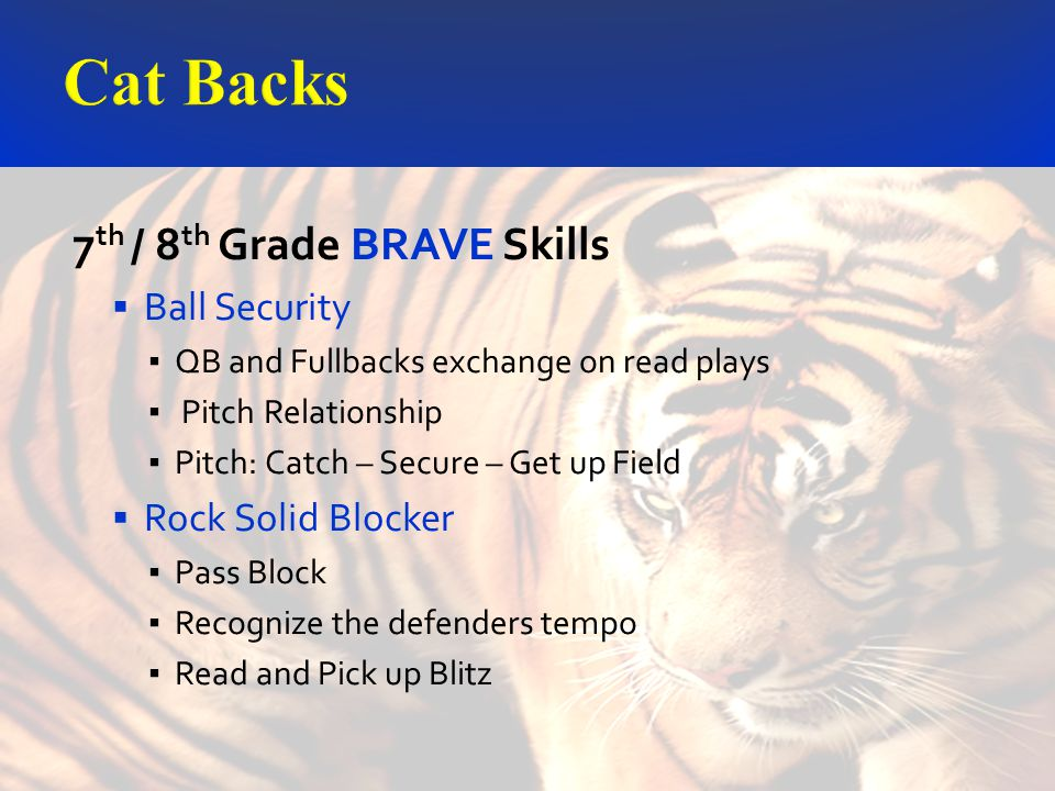 7 th / 8 th Grade BRAVE Skills Ball Security QB and Fullbacks exchange on read plays Pitch Relationship Pitch: Catch – Secure – Get up Field Rock Solid Blocker Pass Block Recognize the defenders tempo Read and Pick up Blitz