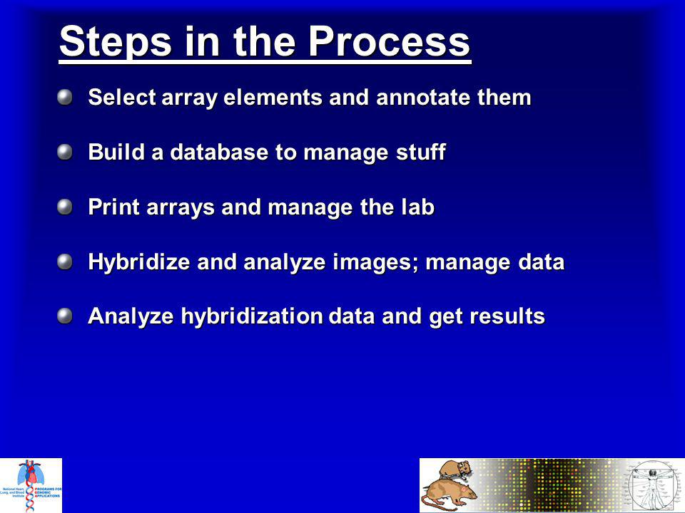 Select array elements and annotate them Build a database to manage stuff Print arrays and manage the lab Hybridize and analyze images; manage data Analyze hybridization data and get results Steps in the Process