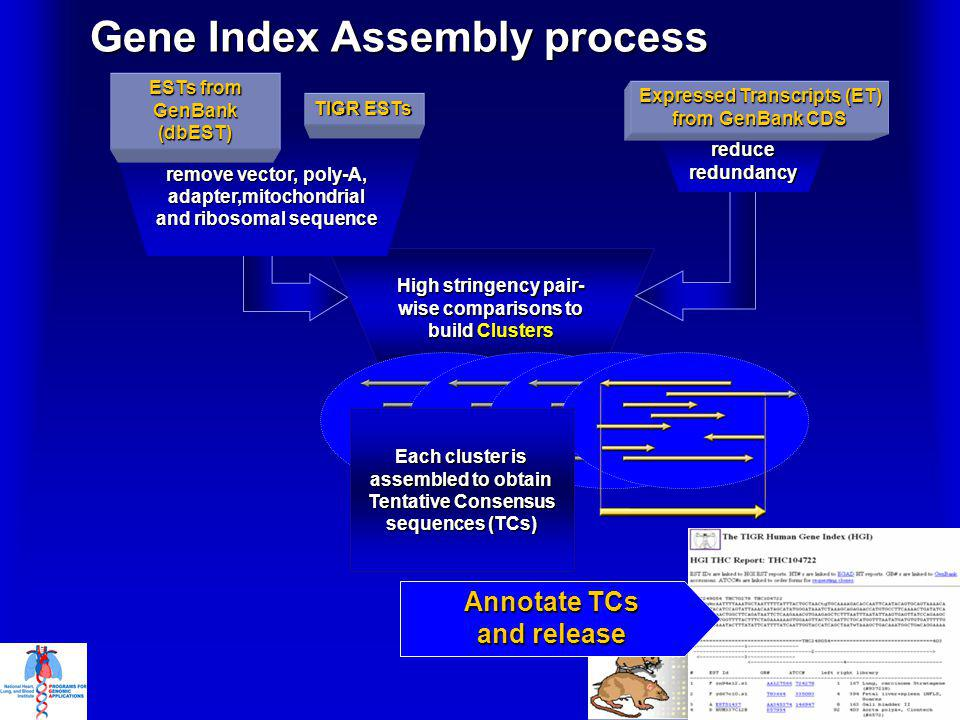 High stringency pair- wise comparisons to build Clusters Gene Index Assembly process reduceredundancy Expressed Transcripts (ET) from GenBank CDS remove vector, poly-A, adapter,mitochondrial and ribosomal sequence ESTs from GenBank (dbEST) TIGR ESTs Each cluster is assembled to obtain Tentative Consensus sequences ( TC s) Annotate TCs and release