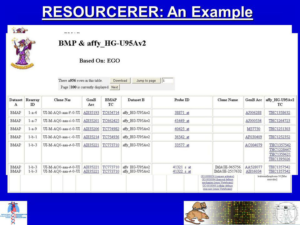 RESOURCERER: An Example