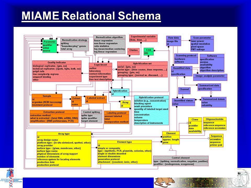 MIAME Relational Schema