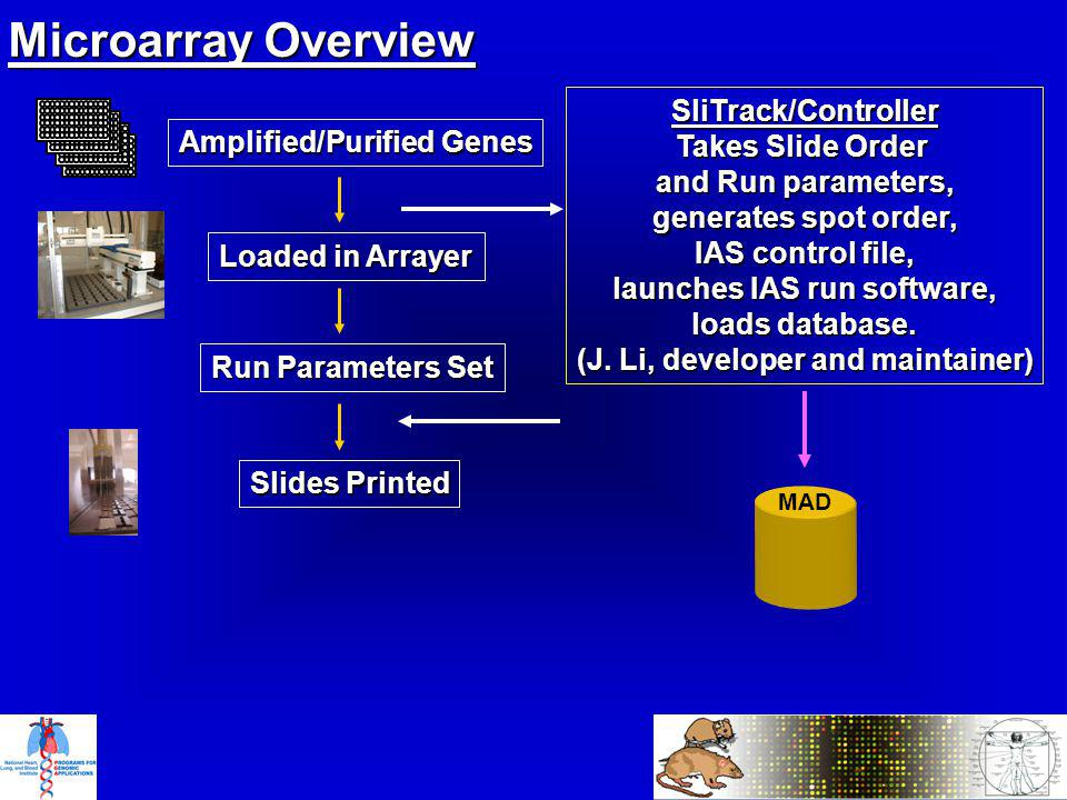 Microarray Overview MAD Amplified/Purified Genes Loaded in Arrayer Slides Printed Run Parameters Set SliTrack/Controller Takes Slide Order and Run parameters, generates spot order, IAS control file, launches IAS run software, loads database.