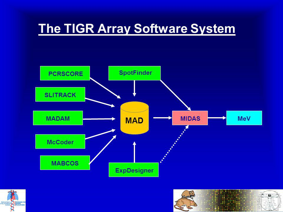 The TIGR Array Software System SLITRACK MADAM PCRSCORE ExpDesigner SpotFinder MABCOS McCoder MeV MIDAS MAD