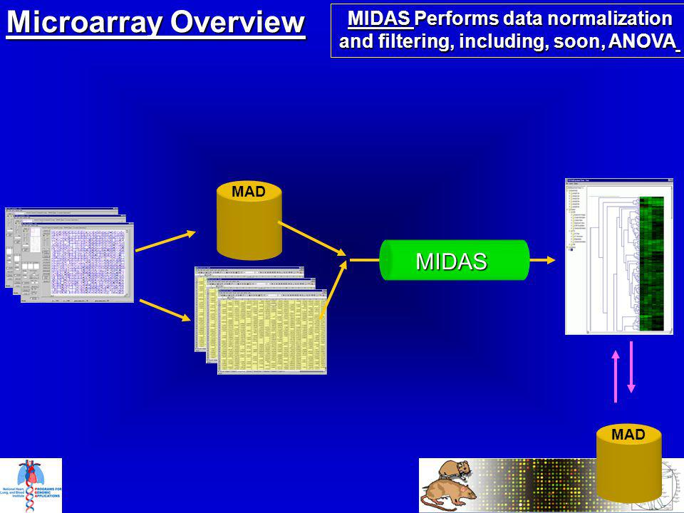 Microarray Overview MAD MIDAS Performs data normalization and filtering, including, soon, ANOVA MIDAS MIDAS