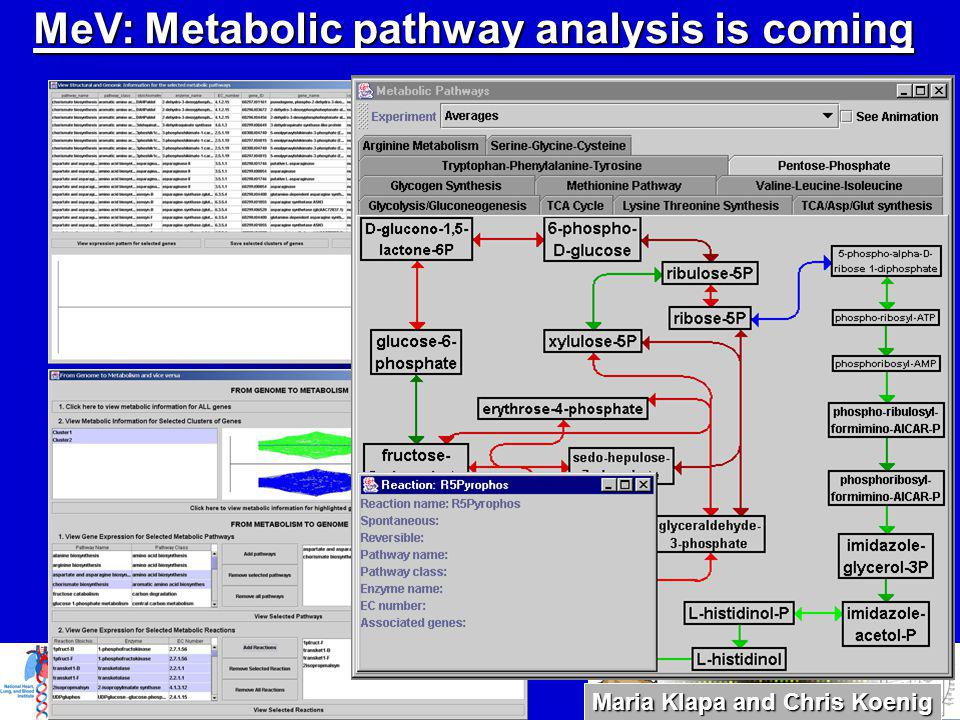 MeV: Metabolic pathway analysis is coming Maria Klapa and Chris Koenig