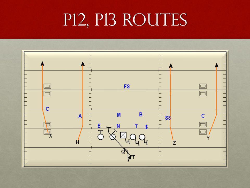 P12, P13 Routes