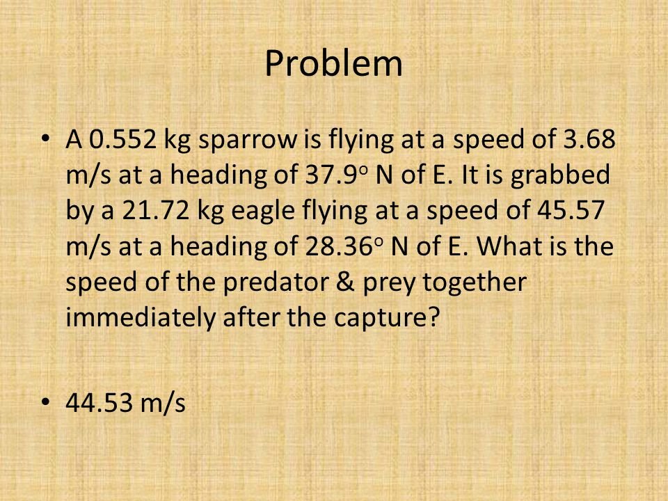 Problem A 0.552 kg sparrow is flying at a speed of 3.68 m/s at a heading of 37.9 o N of E.