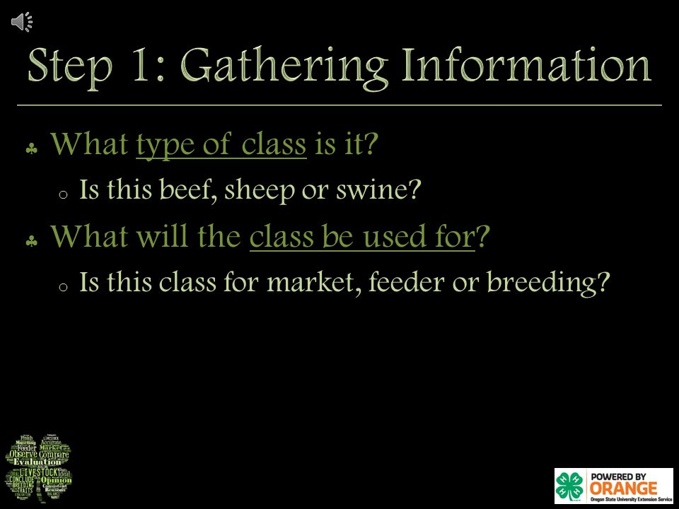 What type of class is it.o Is this beef, sheep or swine.