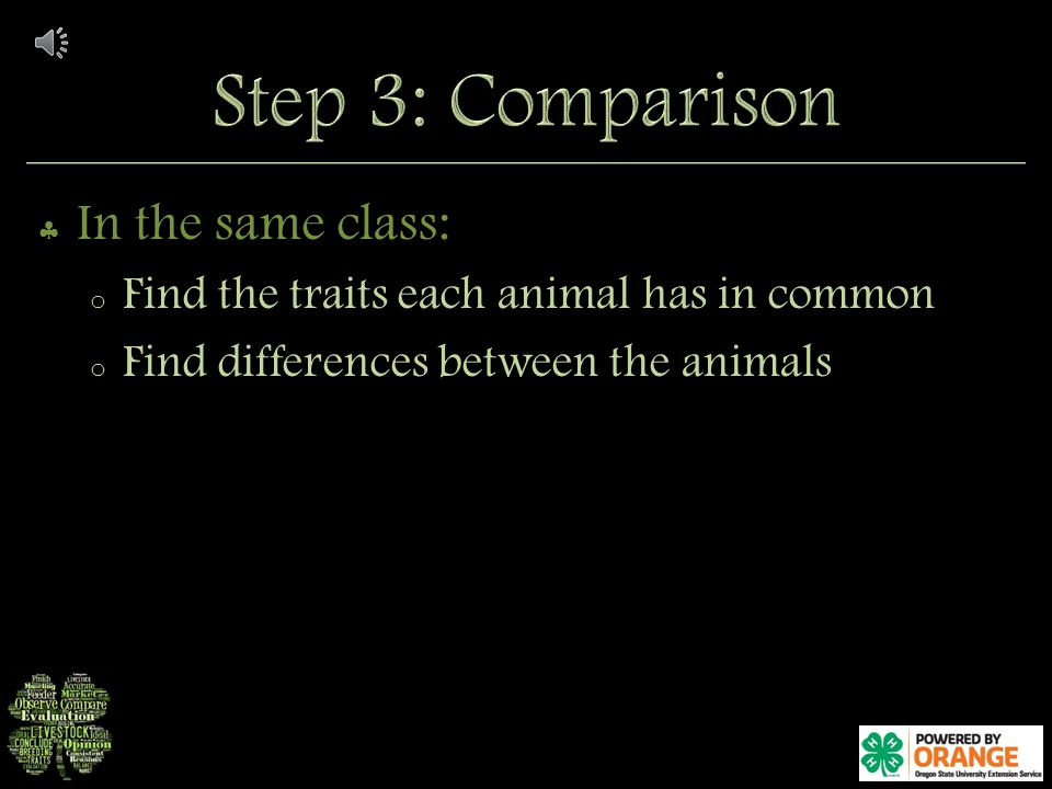 In the same class: o Find the traits each animal has in common o Find differences between the animals