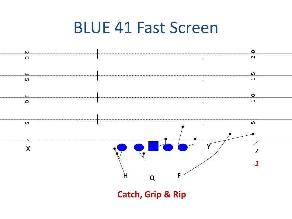 BLUE 41 Fast Screen X FH Q Z Y 5 1 0 1 5 2 0 1 1 5 1 0 5 Catch, Grip & Rip