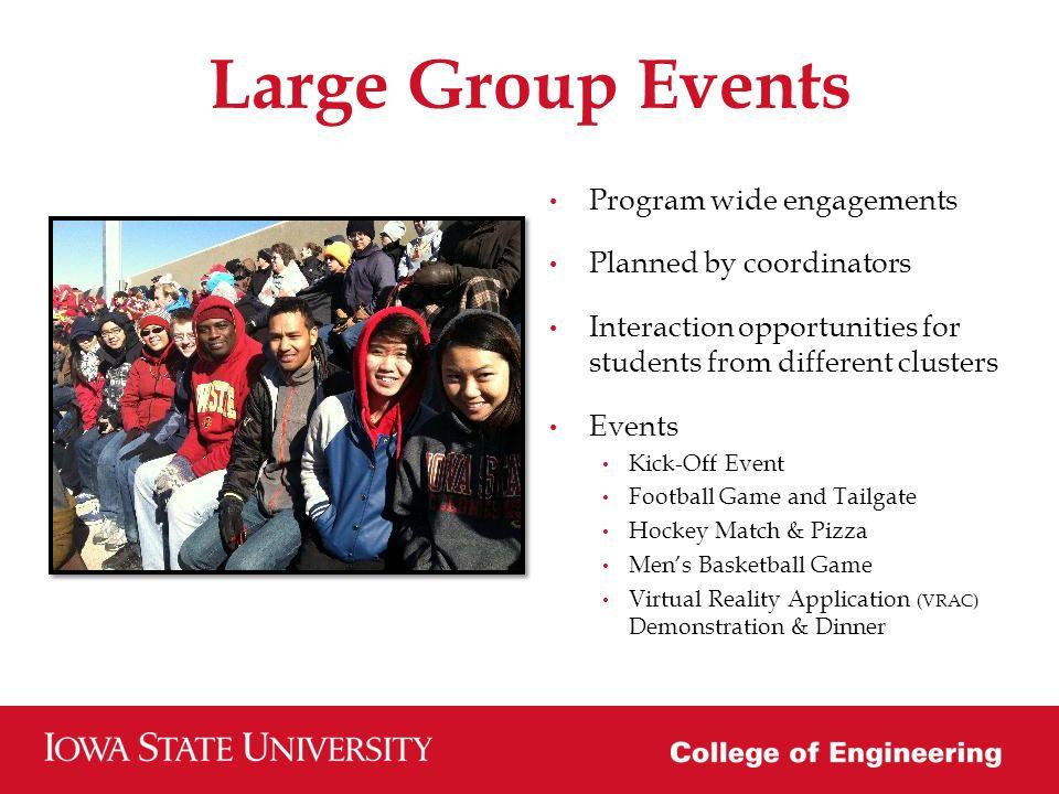 Program Assessment Surveys Pre Post Focus Groups 2012-2013 Participation: 32 clusters 64 graduate mentors (15 domestic/49 international) 125 undergraduate mentees (100 domestic/25 international)