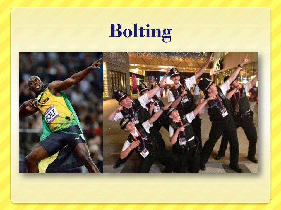 Bolting
