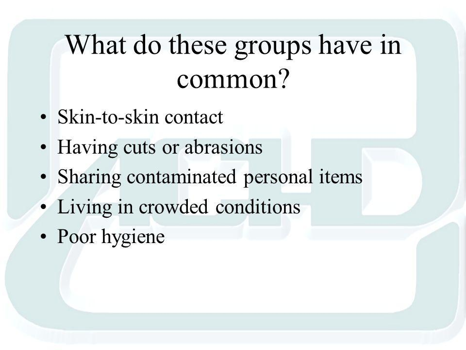 What do these groups have in common.