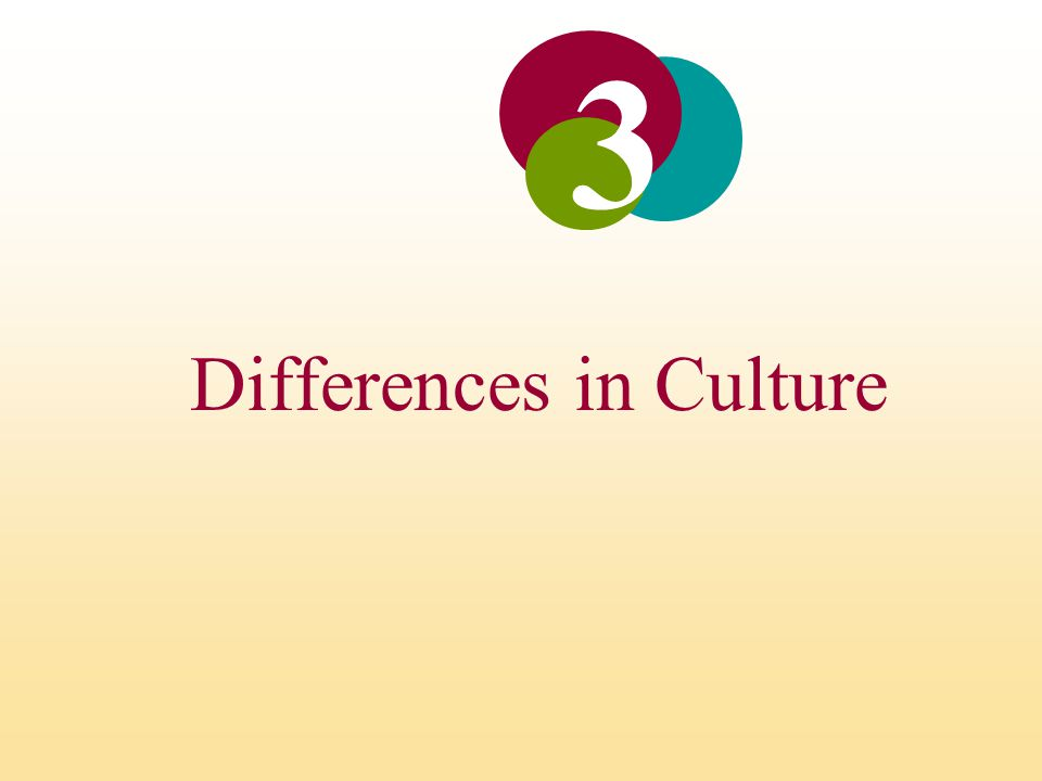 Differences in Culture 3