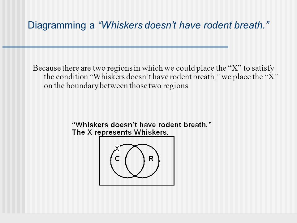 Diagramming a Whiskers doesnt have rodent breath.