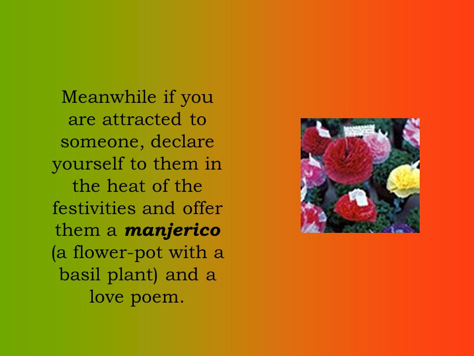 Meanwhile if you are attracted to someone, declare yourself to them in the heat of the festivities and offer them a manjerico (a flower-pot with a bas