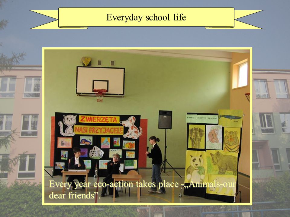 Everyday school life Every year eco-action takes place -Animals-our dear friends.