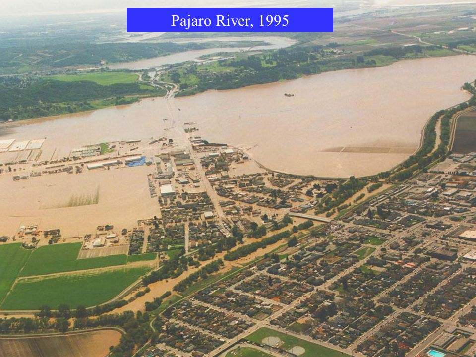 Pajaro River, 1995