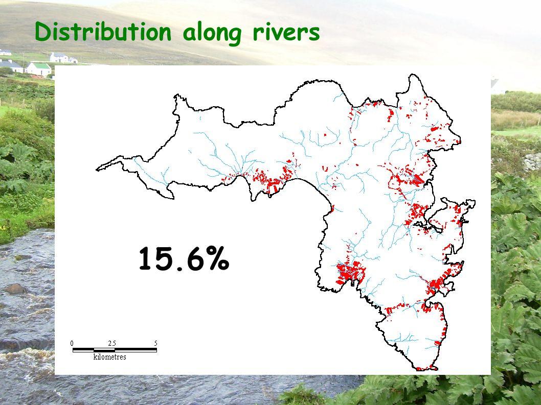 Distribution along rivers 15.6%