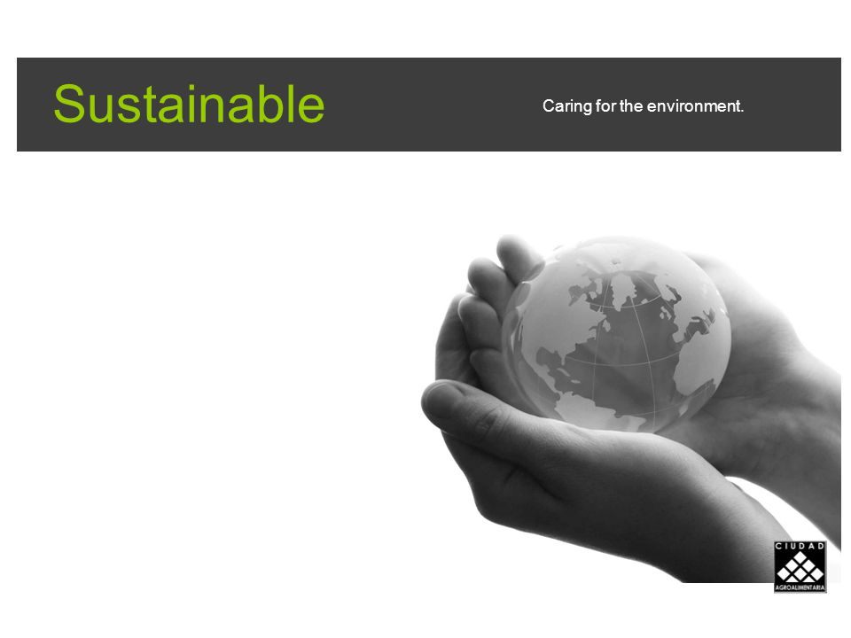 Sustainable Caring for the environment.