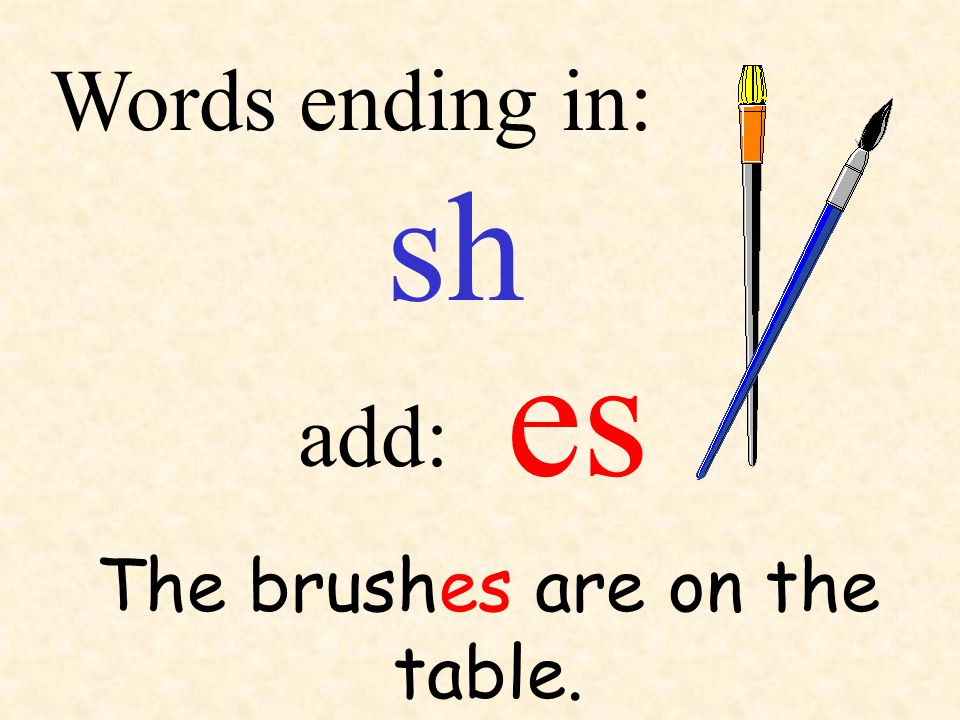 sh add: Words ending in: The brushes are on the table. es