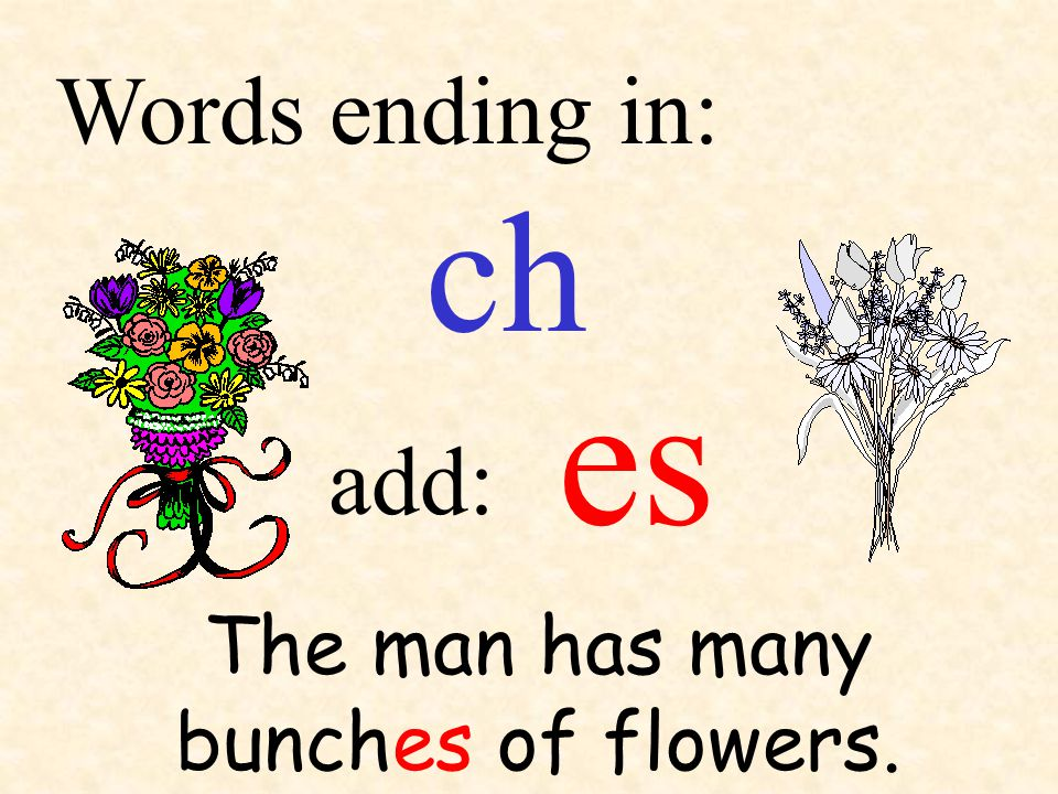 ch add: Words ending in: The man has many bunches of flowers. es