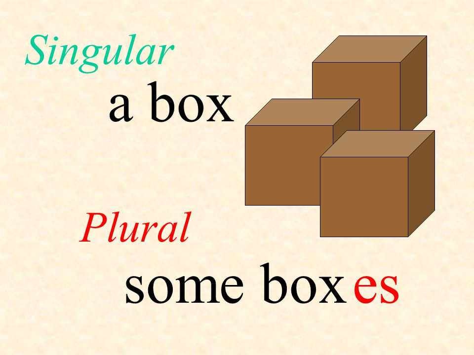 a box Plural Singular some boxes