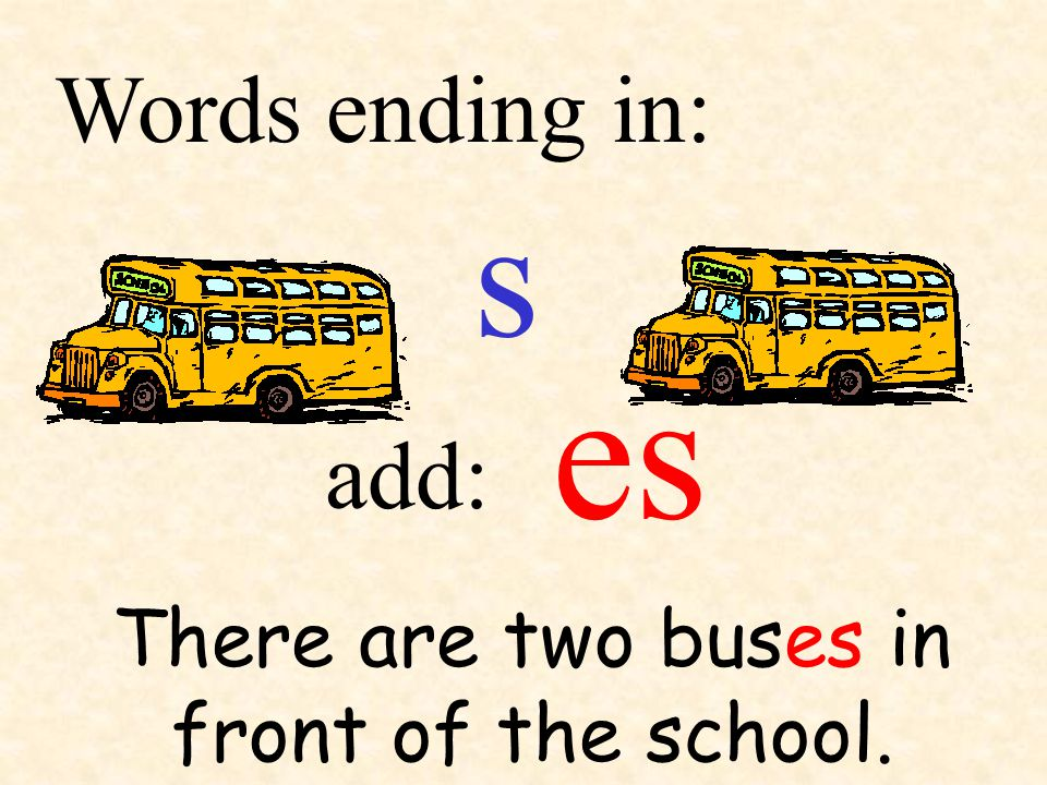 s add: Words ending in: There are two buses in front of the school. es