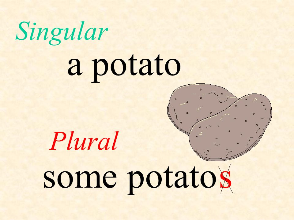 a potato Plural Singular some potatos