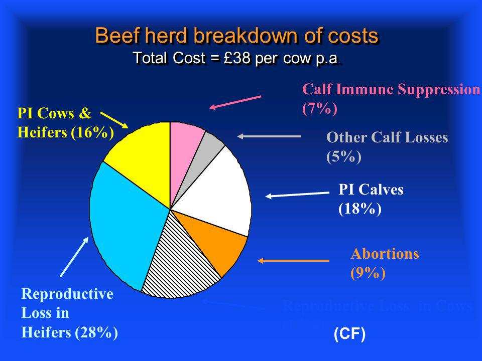 Beef herd breakdown of costs Total Cost = £38 per cow p.a.