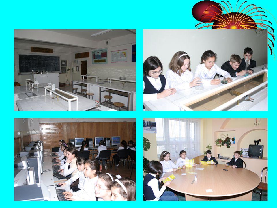 Sports activities: handball, basketball, football, tennis and table tennis