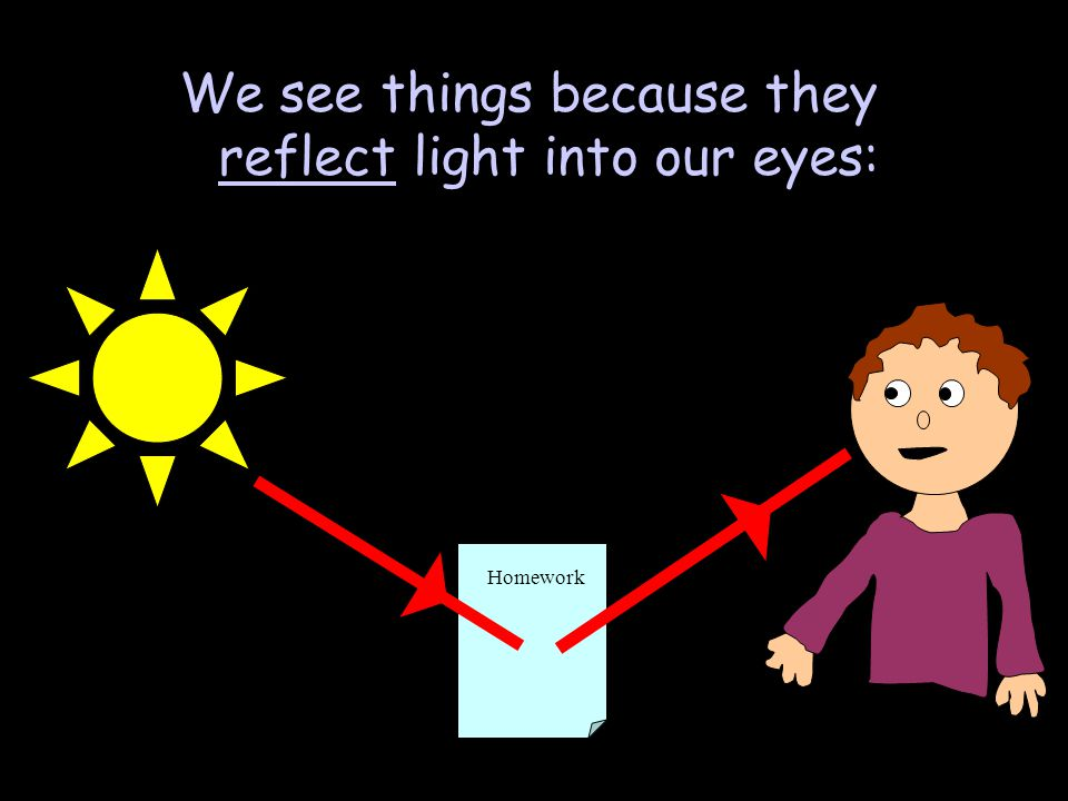 We see things because they reflect light into our eyes: Homework