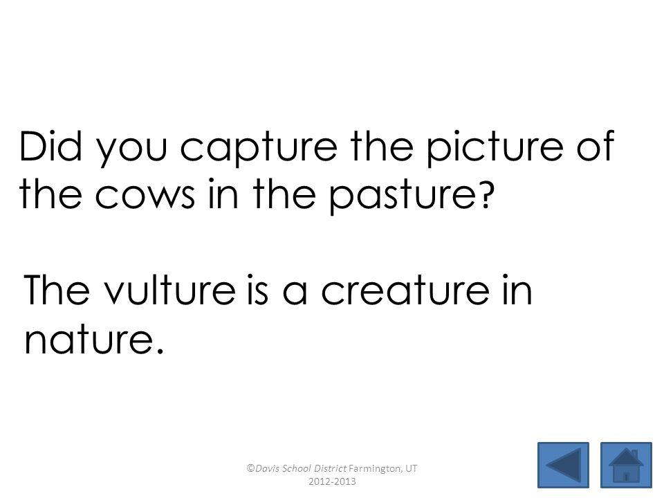 picturefixturecapturejunction mixturemotionposturelecture pasturefracturecaptionculture Did you capture the picture of the cows in the pasture.