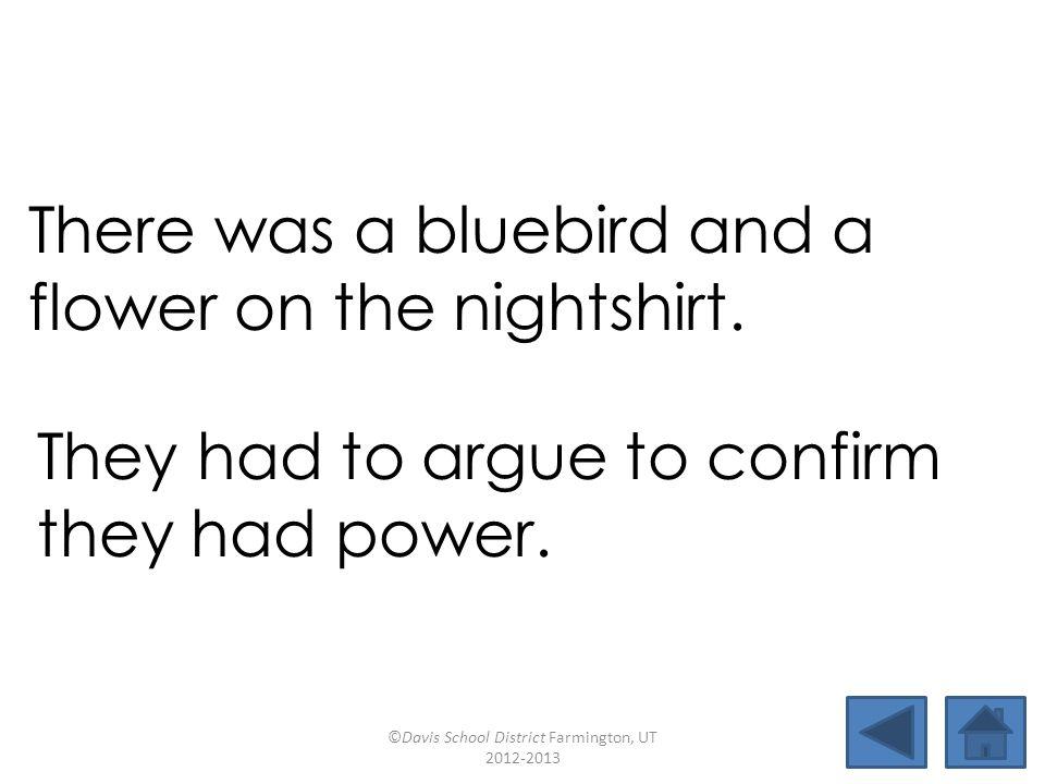 birthmarkflowerargueconfirm countdownbluebirdthirteencoward valuenightshirtpowergluepot There was a bluebird and a flower on the nightshirt.