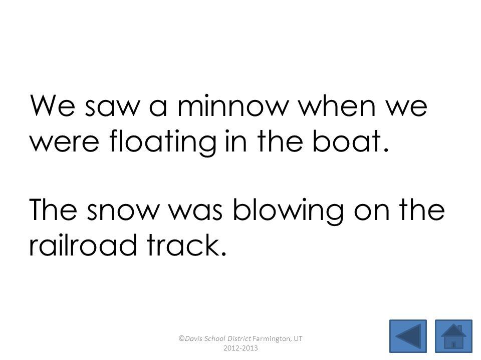 boatpillowblowsoap caseloadtowroperoadmapsnowman minnowelbowcoatrackrailroad We saw a minnow when we were floating in the boat.