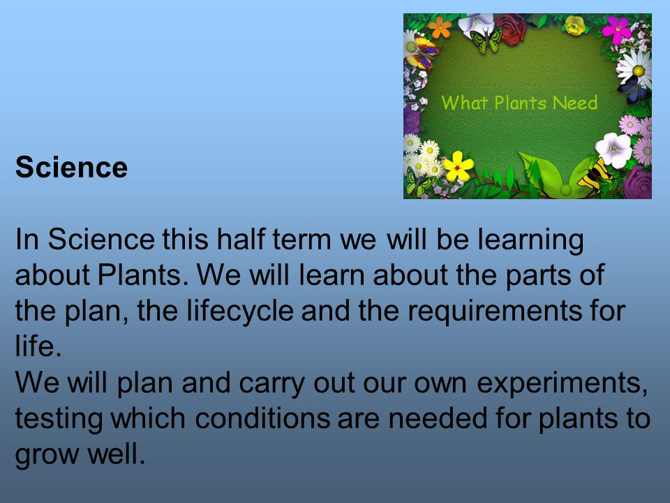 Science In Science this half term we will be learning about Plants.