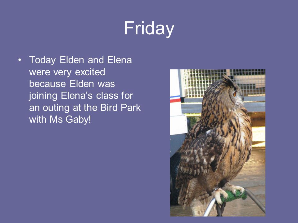 Friday Today Elden and Elena were very excited because Elden was joining Elenas class for an outing at the Bird Park with Ms Gaby!