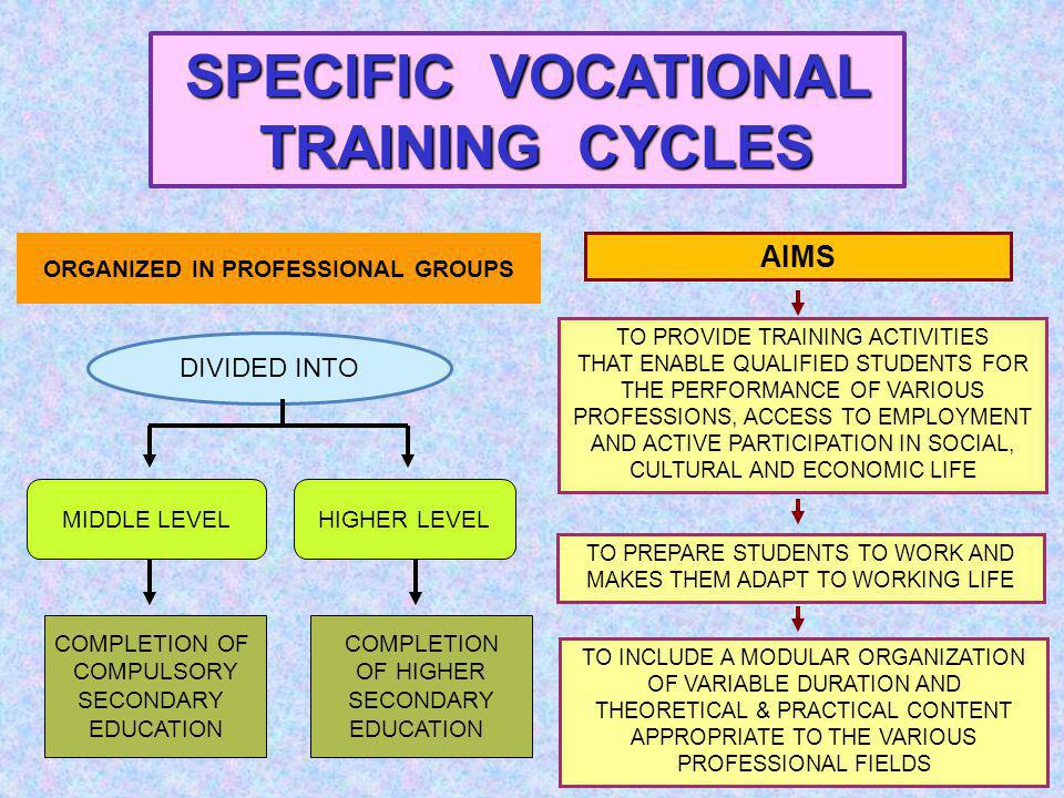 SPECIFIC VOCATIONAL TRAINING CYCLES TO PROVIDE TRAINING ACTIVITIES THAT ENABLE QUALIFIED STUDENTS FOR THE PERFORMANCE OF VARIOUS PROFESSIONS, ACCESS TO EMPLOYMENT AND ACTIVE PARTICIPATION IN SOCIAL, CULTURAL AND ECONOMIC LIFE TO PREPARE STUDENTS TO WORK AND MAKES THEM ADAPT TO WORKING LIFE TO INCLUDE A MODULAR ORGANIZATION OF VARIABLE DURATION AND THEORETICAL & PRACTICAL CONTENT APPROPRIATE TO THE VARIOUS PROFESSIONAL FIELDS DIVIDED INTO AIMS MIDDLE LEVELHIGHER LEVEL ORGANIZED IN PROFESSIONAL GROUPS COMPLETION OF COMPULSORY SECONDARY EDUCATION COMPLETION OF HIGHER SECONDARY EDUCATION