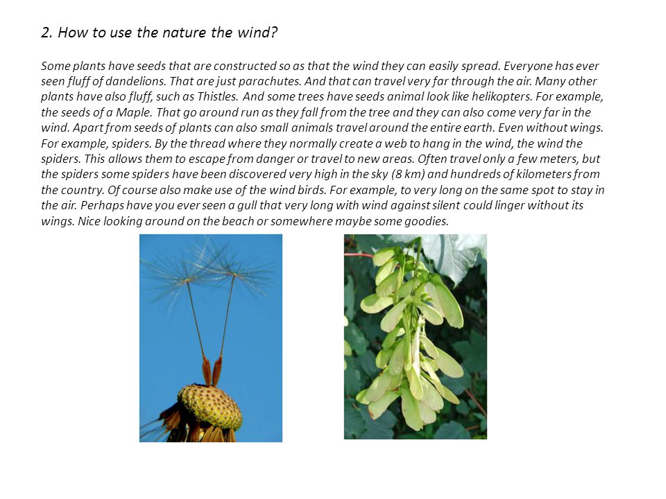 2. How to use the nature the wind.