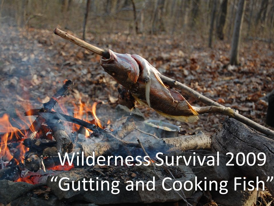 Wilderness Survival 2009 Gutting and Cooking Fish
