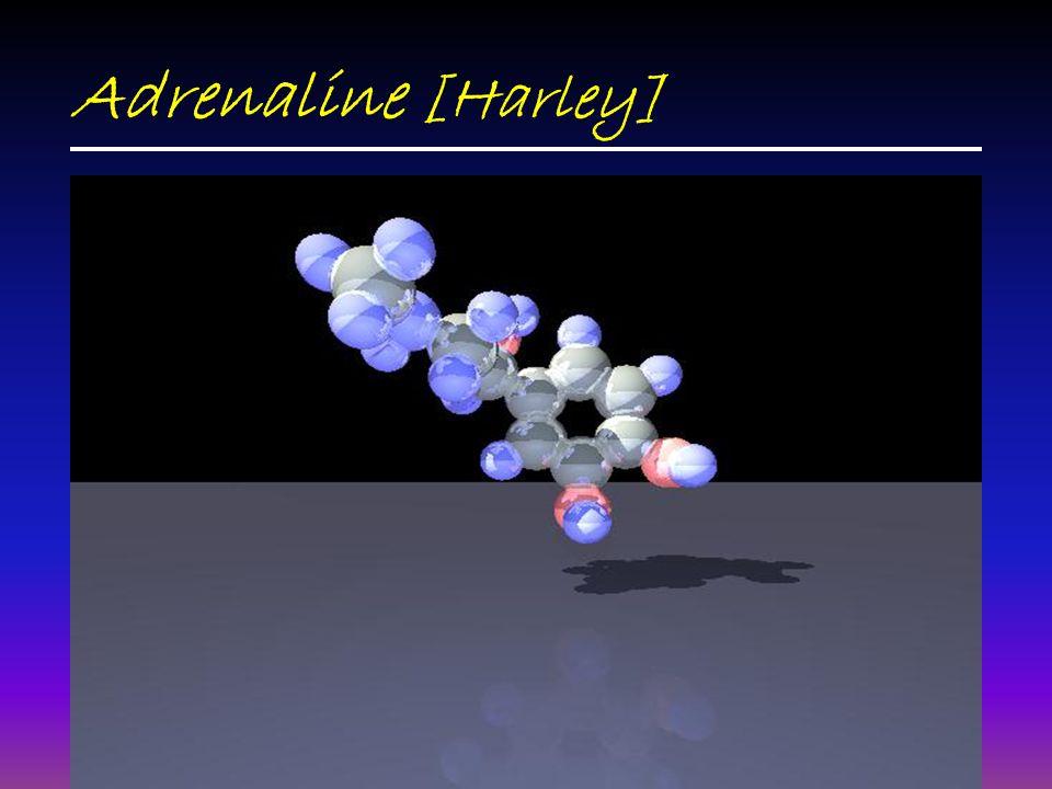 Adrenaline [Harley]