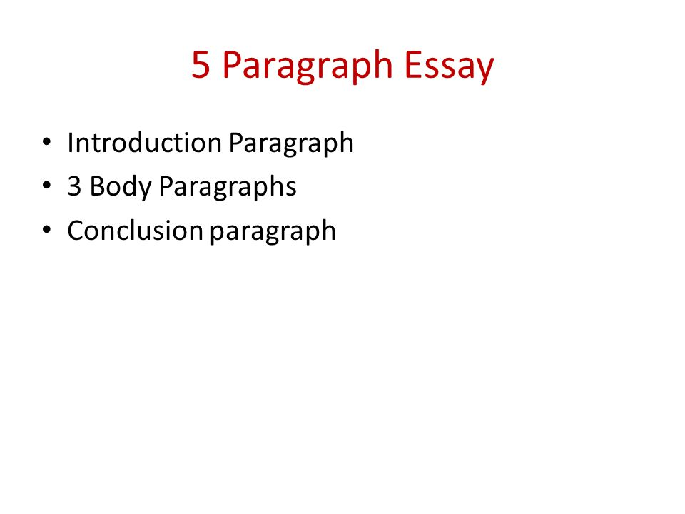 five paragraph autobiographical essay Navigation menu